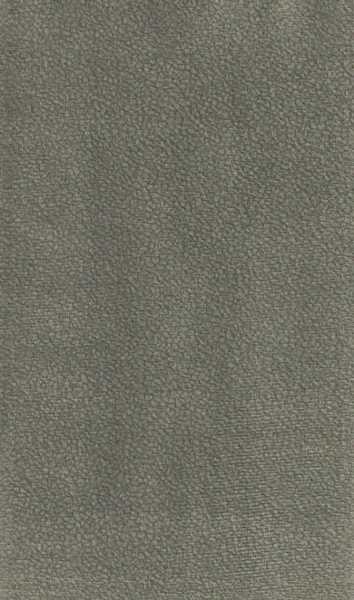 Suede Soft 1450 cor 17