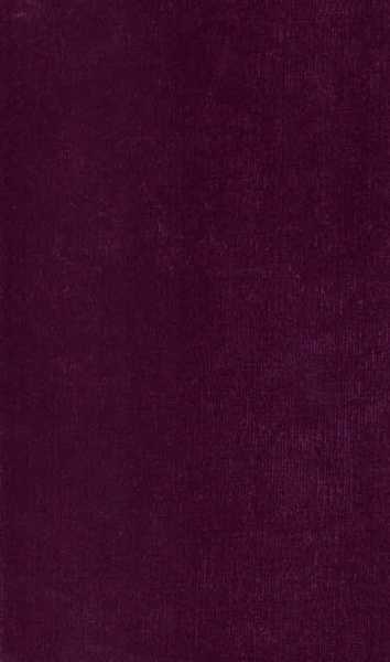 1501 cor 028 Velvet Stone Roxo