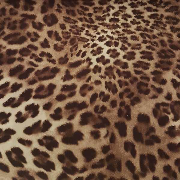 2466 cor 3 Veludo Milano Jaguar