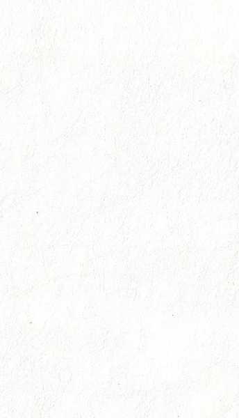 Courissimo Casco Branco cód 80010 B-007