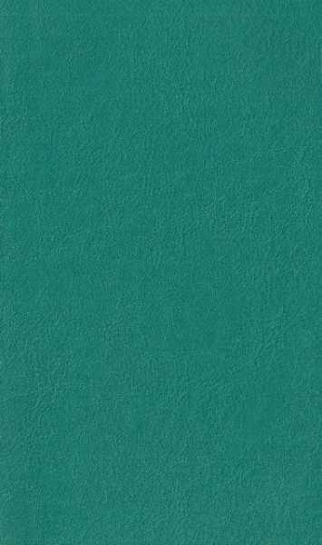 Courissimo Casco Verde cód 80010 cor G-24