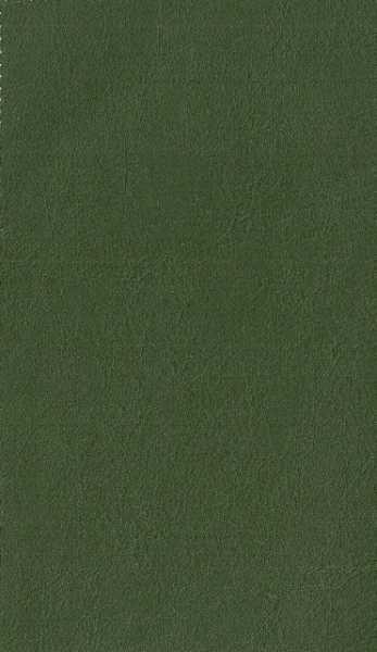 Courissimo Casco Verde cód 80010 cor V-013