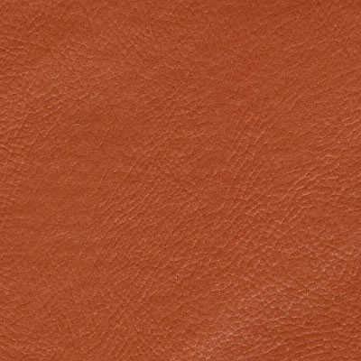 Corano Tijolo 4931
