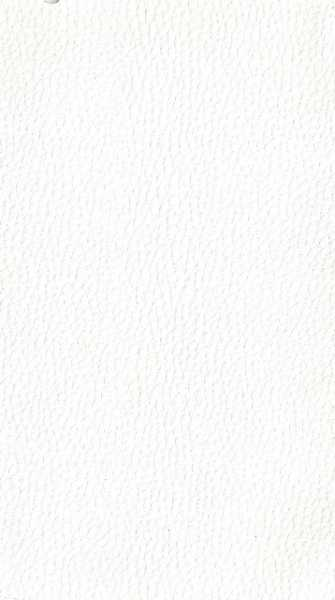 Courvim Viena Branco 1108 cor A-0177