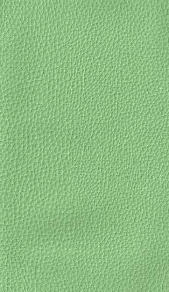 Courvim Viena Verde Od 1108 cor A-3058